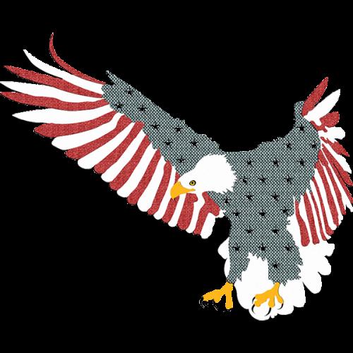 US Eagles 1 2,00 x 1,61m