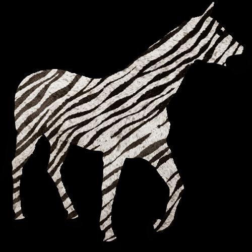 Zebra 1,37 x 1,35 m
